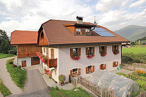 farm holiday - south tyrol - dolomites